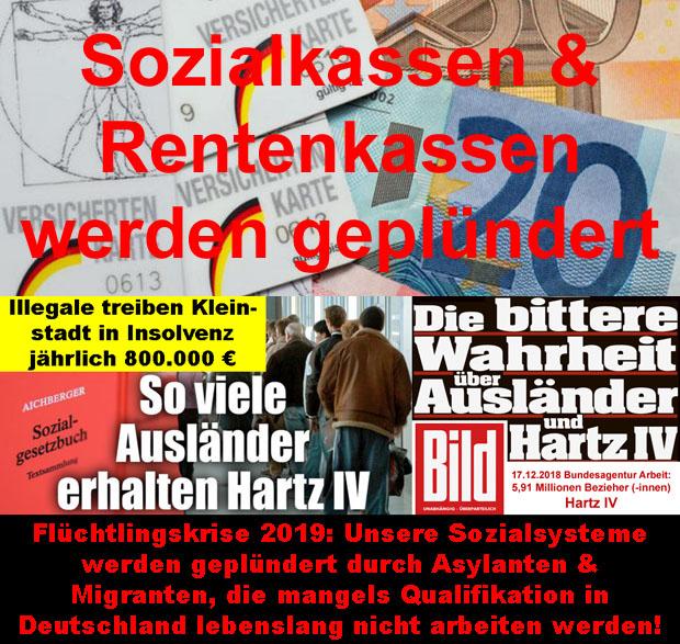 Fluchtlingskrise Wordpress Presseartikel Rfd Rettung Fur Deutschland